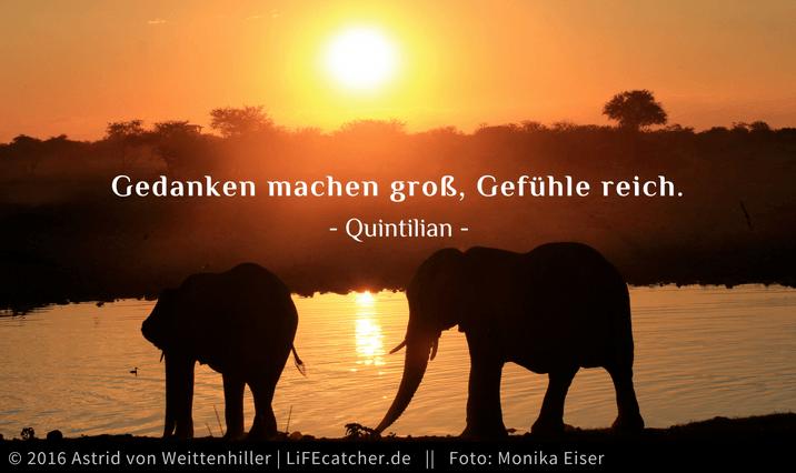 Gedanken machen groß, Gefühle reich. Was tun, wenn du dich erschöpft fühlst • by Astrid von Weittenhiller und Monika Eiser