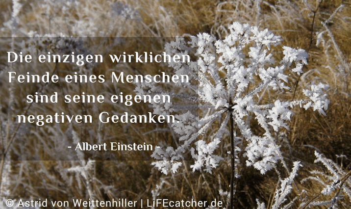 Gedanken hinterfragen: Die einzigen wirklichen Feinde eines Menschen sind seine eigenen negativen Gedanken. Albert Einstein • Foto by Astrid von Weittenhiller