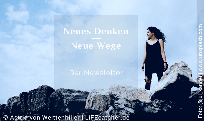 LiFEcatcher-Liga_Newsletter • Design by Astrid von Weittenhiller