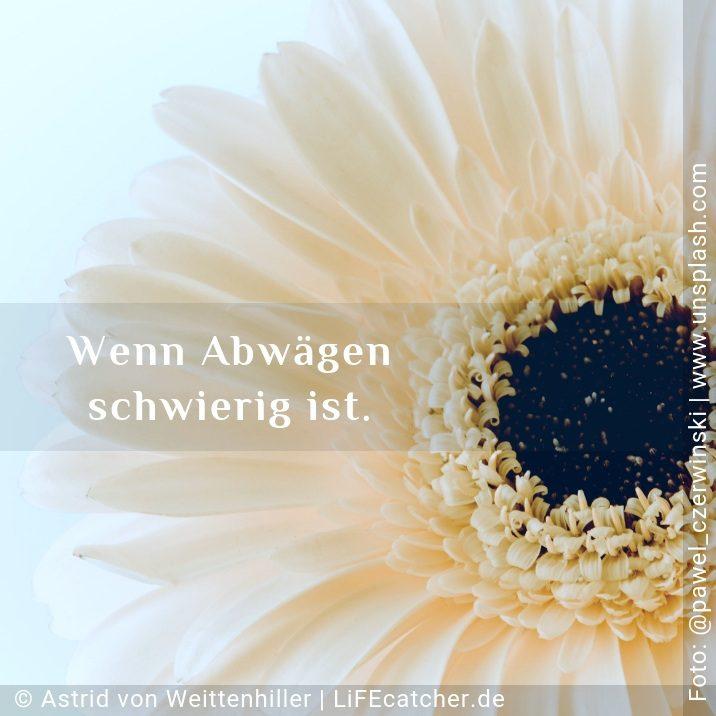 Wie du Äpfel und Birnen vergleichst: Wenn Abwägen schwierig ist. • Design by Astrid von Weittenhiller