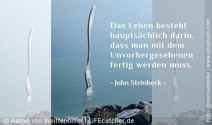 Das Leben besteht hauptsächlich darin, dass man mit dem Unvorhergesehenen fertig werden muss. John Steinbeck • Design by Astrid von Weittenhiller
