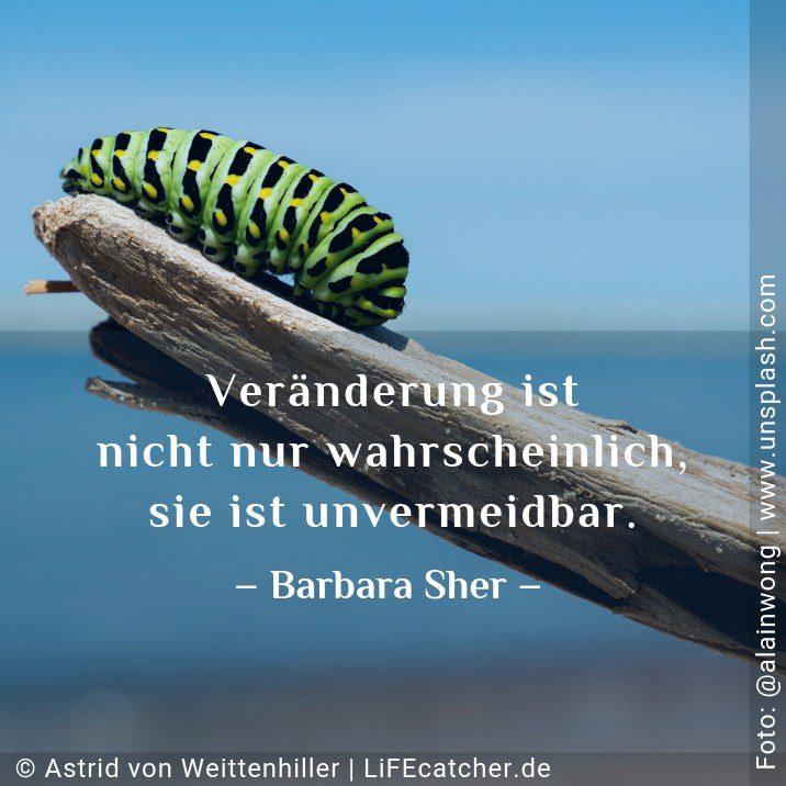 Veränderung ist nicht nur wahrscheinlich, sie ist unvermeidbar. Barbara Sher • Design by Astrid von Weittenhiller