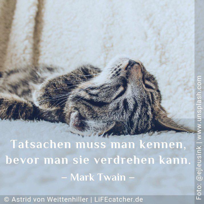 Fakten erkennen: Tatsachen muss man kennen, bevor man sie verdrehen kann. Mark Twain • Design by Astrid von Weittenhiller