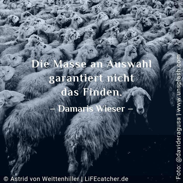 Suche nach dem Sinn: Die Masse an Auswahl garantiert nicht das Finden. Damaris Wieser • Foto by Astrid Weittenhiller