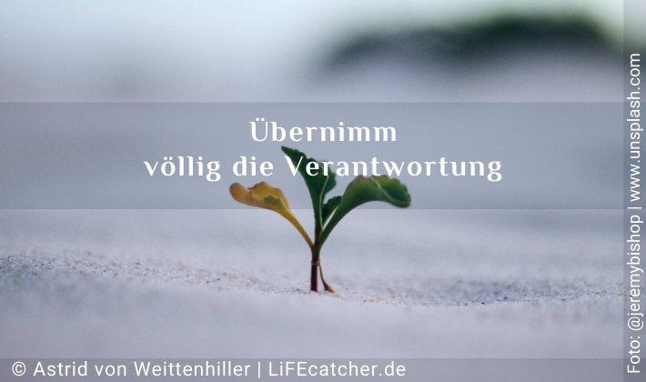 Übernimm völlig die Verantwortung • Design by Astrid von Weittenhiller